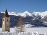 bus tours in the Vinschgau